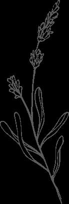 footer leaf